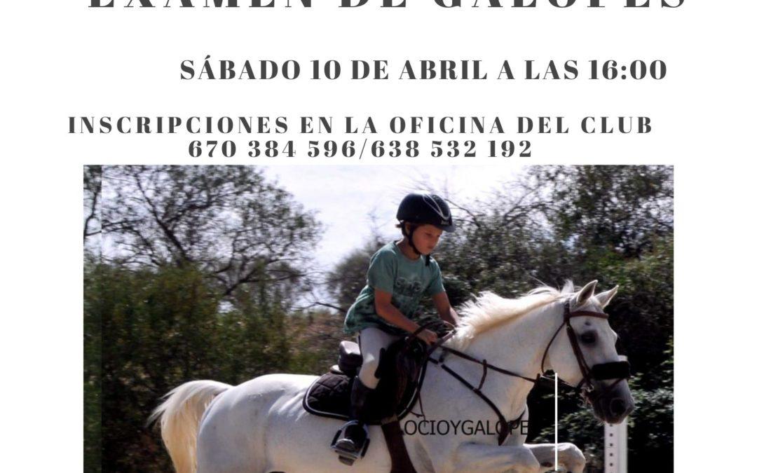 CONVOCATORIA EXAMEN DE GALOPES SABADO 17 DE ABRIL 16:00